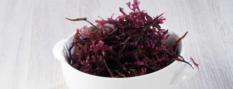 sea moss purple in bowl