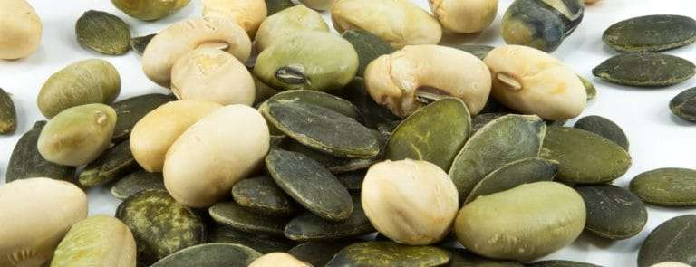 Pumpkin seeds and soy beans on white background