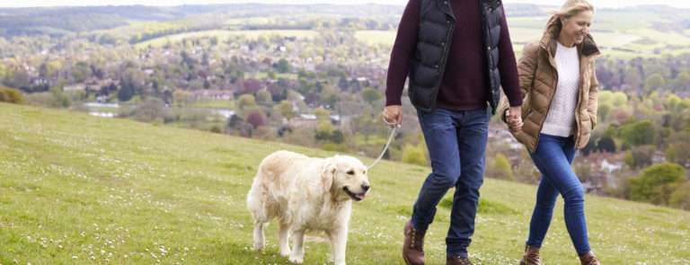 a mature couple walking with no joint pain thanks to collagen supplements