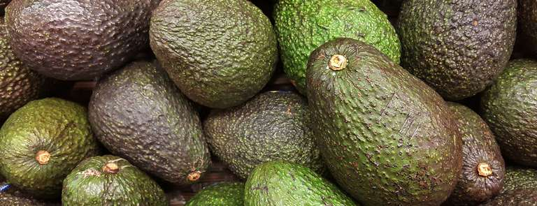 a number of different avocados