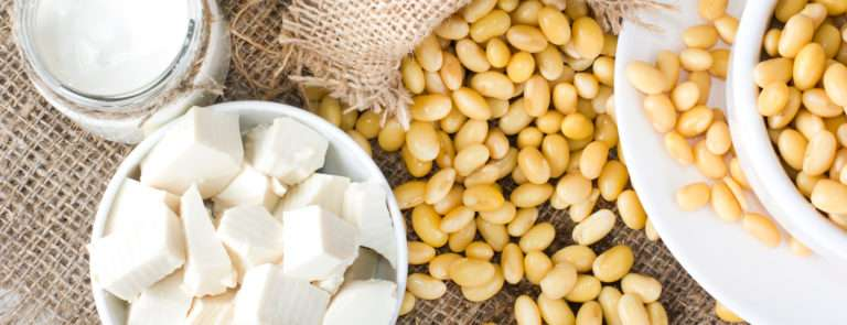 soya products contain vitamin B12
