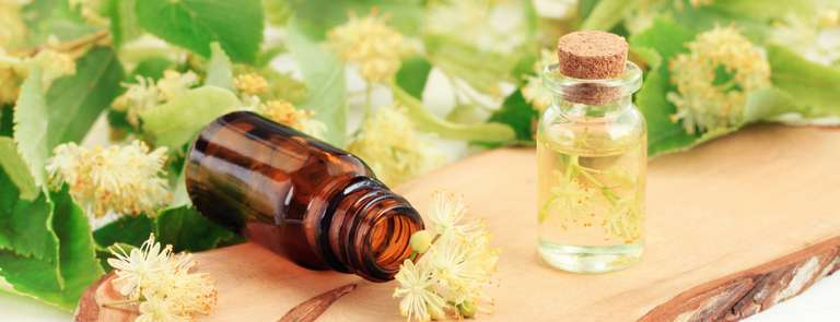 essential oil natural leaves and flowers