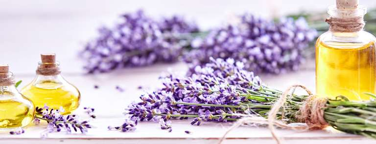 lavender dried flowers with bottles of oil in background