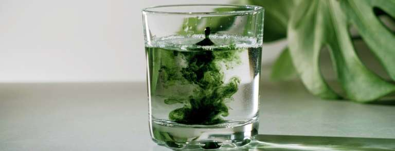 chlorophyll liquid in a glass of water
