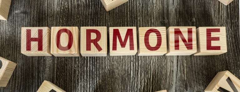 Wooden blocks spelling out hormone
