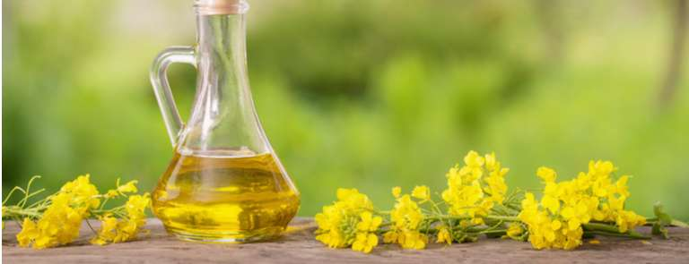 bottle of canola oil next to flowers