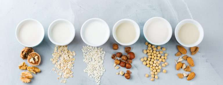 Six cups of vegan milk lined up, with the main raw ingredient scattered in front of each cup.